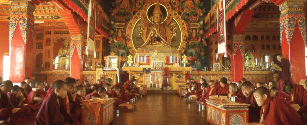 Volunteer in Buddhist Monasteries of Nepal